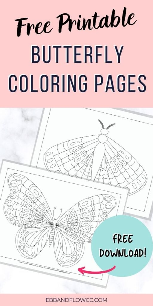 pin image - coloring page with butterfly and moth images
