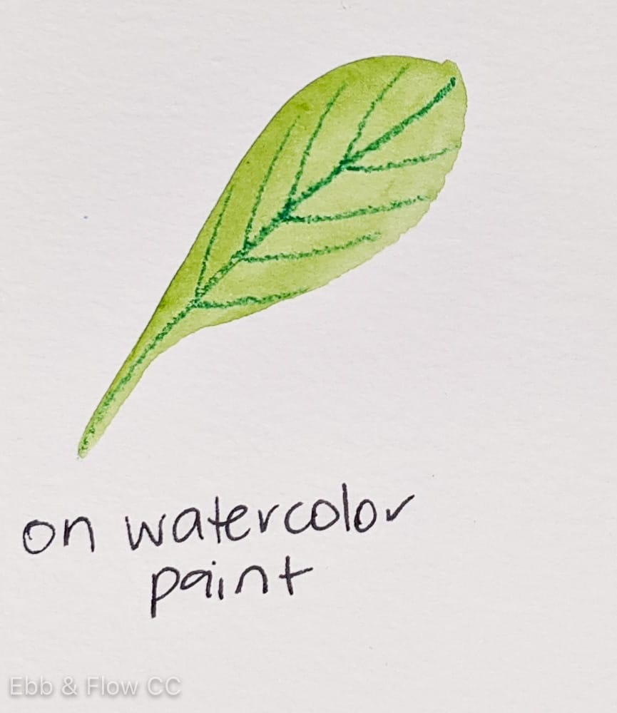 adding pencil to watercolor leaf