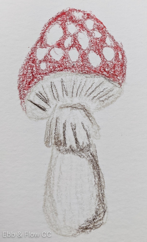 mushroom colored with pencil
