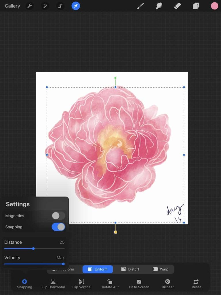 snapping tool in procreate