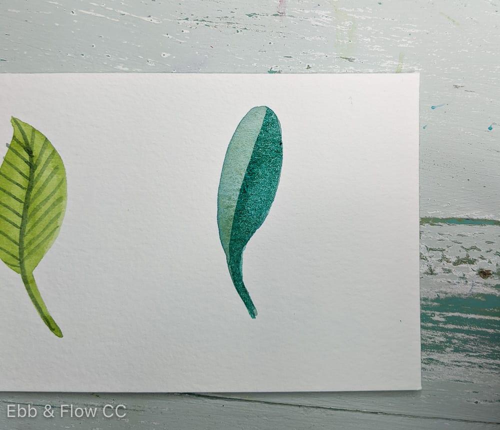 half of leaf painted darker color