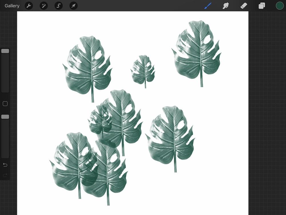 tropical leaf stamp in procreate