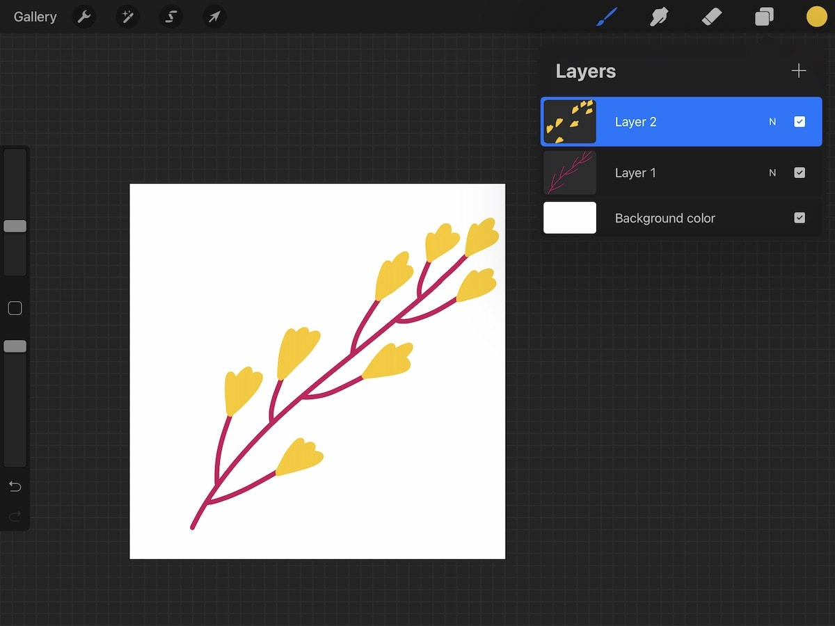 procreate screenshot with branch illustration