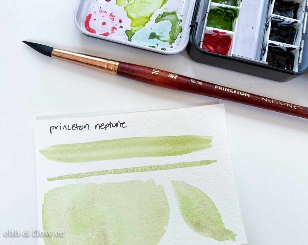 princeton neptune brush swatches